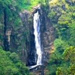 Sri Lanka Horton Plains Nationalpark