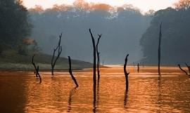 Indien Periyar See