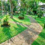 Lawrence Hill Paradise_Garten3