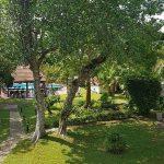 Lawrence Hill Paradise_Garten5
