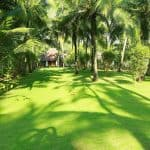 Yantra Ayurvedic Beach Resort